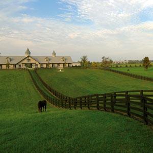 Garden Dialogues Kentucky The Cultural Landscape Foundation