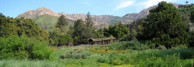 santa barbara botanic garden on the road to restoration