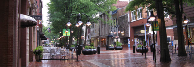 Charlottesville Mall At Risk The Cultural Landscape