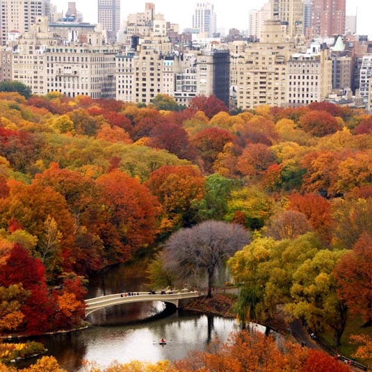 Central Park Nyc: Bridging The Nature-Culture Divide II: Stewardship Of