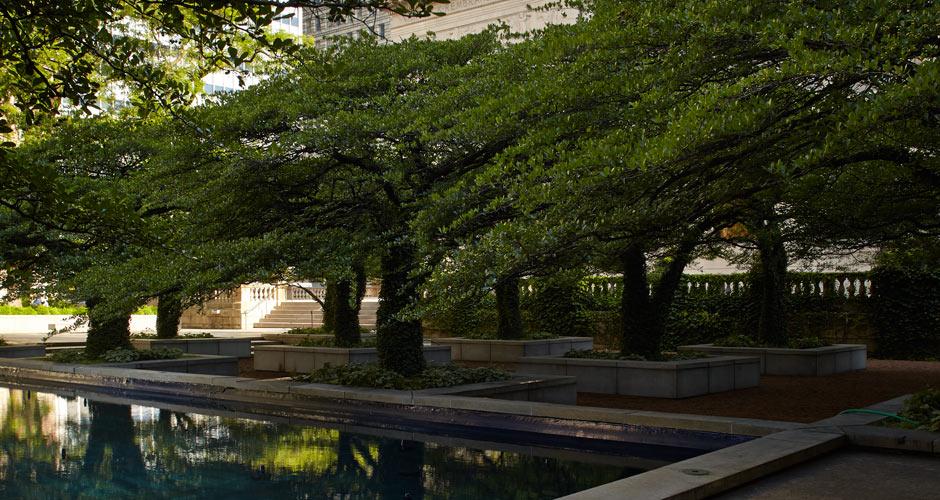 ... Art Institute Of Chicago, South Garden ...