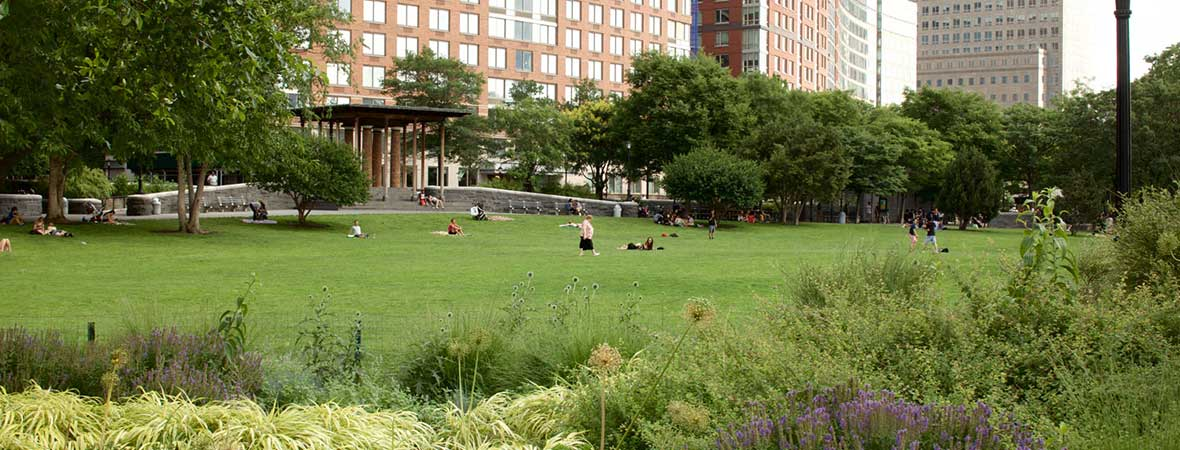Backyard Forest Stewardship : The New American Garden, The Landscape Architecture of Oehme, van