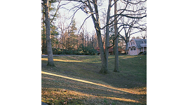 albemarlepark04.jpg
