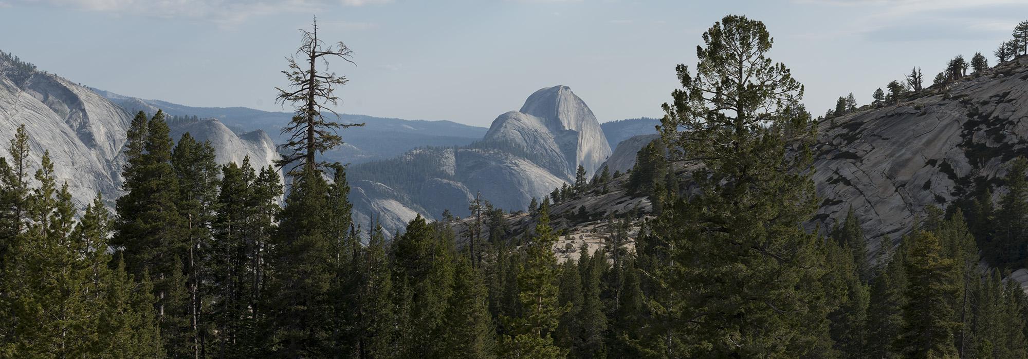 YosemiteNationalPark_hero_CarolMHighsmith.jpg
