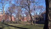Harvard Yard_01