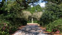 New Orleans City Park_03