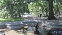 Boston Public Garden_03