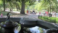Boston Public Garden_04