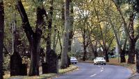 Seattle Parks and Boulevard System_07