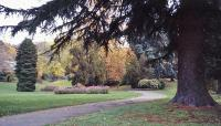 Seattle Parks and Boulevard System_04