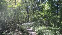 Olmsted Park_02