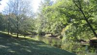 The Riverway_07