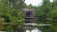 Crosby Arboretum_05