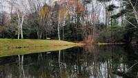 Abbott Park_02