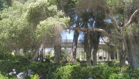 Balboa Park_08
