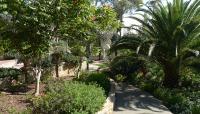 Casa del Rey Moro Garden_08
