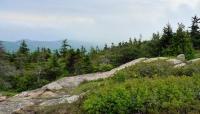 Acadia National Park_08