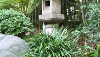 Hannah Carter Japanese Garden_03