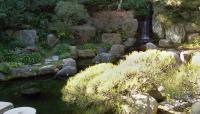 Hannah Carter Japanese Garden_08