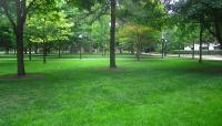 University of Michigan_02