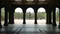 Central Park NYC_09