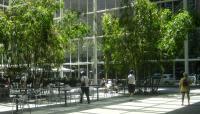 590 Madison Avenue Atrium_04