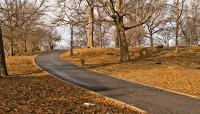 Crotona Park_03