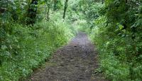 Pelham Bay Park_06