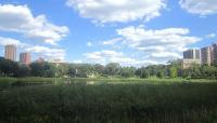 Loring Park_08