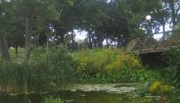 Loring Park_06