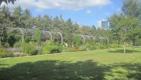 Minneapolis Sculpture Garden_10