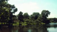 Lakewood Cemetery_02