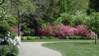 Azalea Garden_Fairmount Park_04