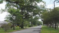 Brookland-Parkway-6-2014.jpg