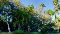 CA-Beverly_Gardens_Park-Matthew_Traucht2014-14.jpg