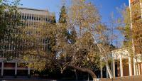 CA-UCLA-Matthew_Traucht2014-4.jpg