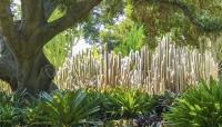 CA_Montecito_Lotusland_CharlesBirnbaum_2018_sig_003.jpg