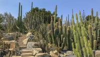 CA_Montecito_Lotusland_CharlesBirnbaum_2018_sig_006.jpg