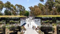 CA_SanDiego_UCSD_byKelseyKaline_2019_003_sig_008.jpg