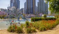 CA_SanDiego_WaterfrontPark_byKelseyKaline_2019_013_sig_001.jpg