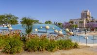CA_SanDiego_WaterfrontPark_byKelseyKaline_2019_015_sig_004.jpg