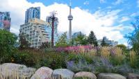 CanadianNationalTower_03_NathanJenkins_2014.jpg