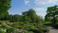 Fort-Tryon_Heather-Garden-01--phot-Robert-Walsh.jpg