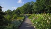 Fort-Tryon_Heather-Garden_02_phot-Robert-Walsh.jpg