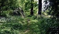 HebertArboretum-MA-Pittsfield-MichaelBradley-2013_wot.jpg