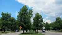 LincolnParkway1-Buffalo-NY-CB-2012.jpg