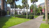 LoyolaUniversity_feature_2016_JoniEmmons_003.jpg