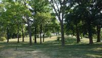 MN_Minneapolis_FarviewPark_byCharleneRoise_2021_022_sig_008.jpg