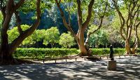Franklin D Murphy Sculpture Garden The Cultural Landscape Foundation