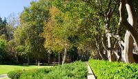 Murphy-Sculpture-Garden--Matthew_Traucht2014-6.jpg